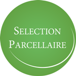parcellaire Copie